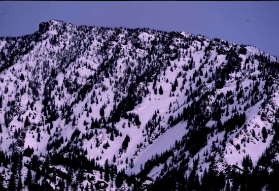 The initial backside of Downing Mountain, backcountry ski runs into Sawtooth Canyon