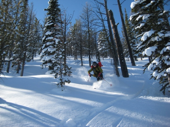 Skiing the northeast facing glades at 8000'